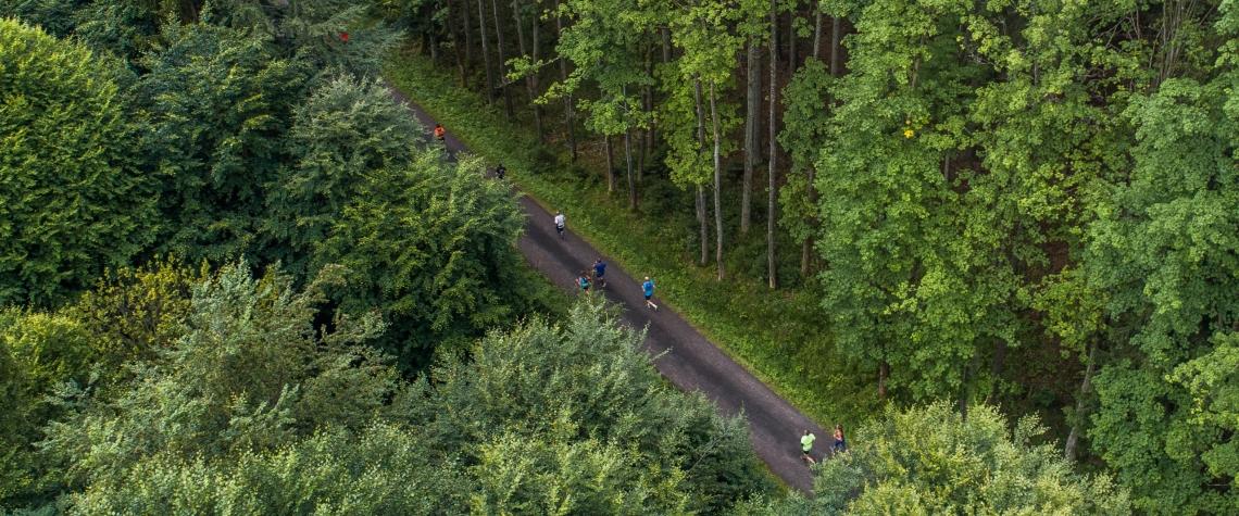 Behej lesy Karlovarsky kraj Slavkovsky les sport zdravi scaled