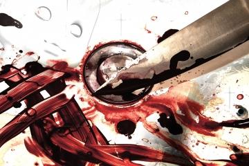 Kriminalisté řeší pokus vraždy a dvojnásobnou vraždu. (Videa v článku)
