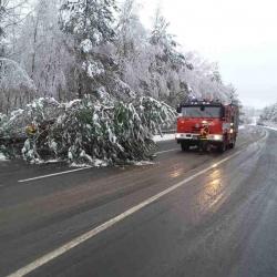 Mokrý sníh komplikoval dopravu. Spadlé stromy blokovaly silnice