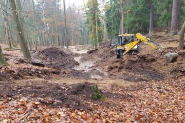 Lázeňské lesy Karlovy Vary začaly v karlovarských lesních porostech budovat tůně