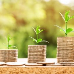 Rada Karlovarského kraje schválila vyhlášení dotačních programů pro rok 2021