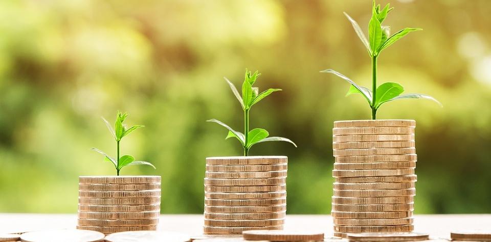 Průměrné mzdy v Karlovarském kraji. Rada Karlovarského kraje schválila vyhlášení dotačních programů pro rok 2021