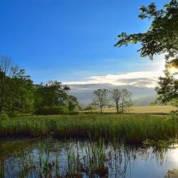 Na opatření proti suchu můžete získat krajskou dotaci