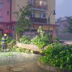 Silná bouřka lámala stromy a hasiči vyjížděli k desítkám případů