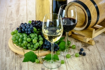 Pozvánka na Sokolovské slavnosti vína