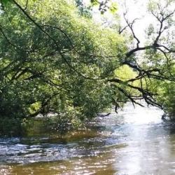 Hasiči varují vodáky před sjížděním horního toku Ohře