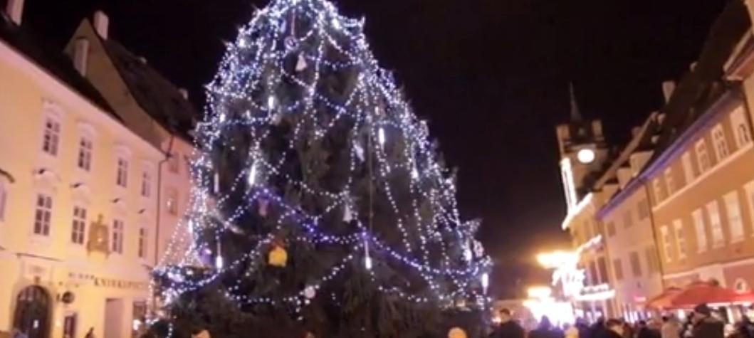 Město Cheb hledá dárce vhodného vánočního stromu