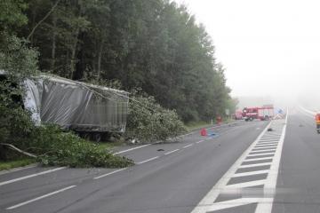Smrtelné dopravní nehody